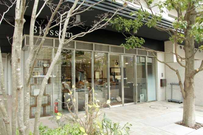 Blossom プラウドシティ志木本町店、2月1日(金)移転リニューアルOPEN!/美容室ブロッサム